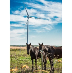 Siemens D3 wind turbines ordered for Canadian project: 220 kilometers southwest of Toronto in Ontario the Grand Bend wind power plant will be erected with 40 Siemens direct drive wind turbines of the type SWT-3.2-113.
