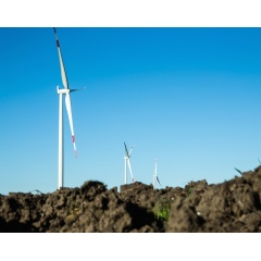 The Hornsdale wind project, located in the Australian Capital Territory (ACT), will consist of 32 Siemens SWT-3.2-113 direct drive wind turbines.