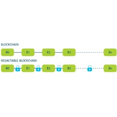 Accenture has created a prototype of an editable blockchain capability for permissioned systems based on a modified chameleon hash function developed with Dr. Giuseppe Ateniese
