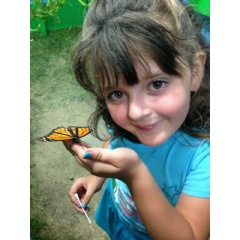 The Fair's Butterfly Adventures exhibit teaches kids how to feed butterflies. Fair opens June 6 and runs thought June 14th