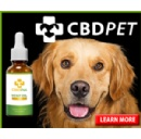 Nutra Pure Adds Organic CBD Oil For Dogs And Cats To Product Line