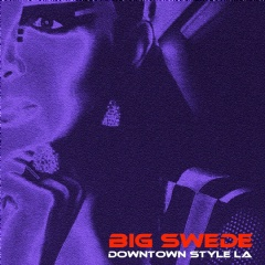 Big Swede - Downtown Style LA - Cover Art