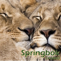 Valentines free spins at South Africa's Springbok Casino and Mobile Casino.