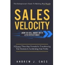 "Best Selling Book, ""Sales Velocity,"" Is Now Free on Amazon for 5 Days (until 11/25/2016)"