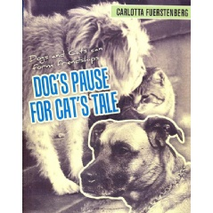 Dog's Pause for Cat's Tale: Dogs and Cats Can Form Friendships