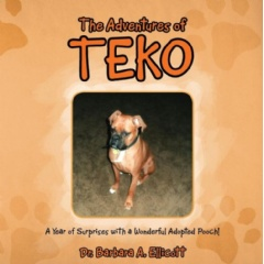 """The Adventures of Teko""