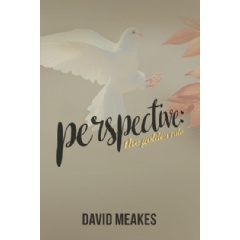 """Perspective: The Golden Rule"" by David Meakes"