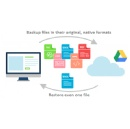 New Handy Backup Solution Allows Direct Backup to Google Drive