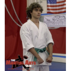 Robbie Oaks (Jansen Panettiere) learns that martial arts is a positive way to improve all aspects of your life in THE MARTIAL ARTS KID.