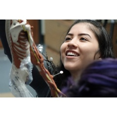 A student at the Career Education Center in Denver working with the Anatomy in Clay® Learning System.