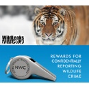 Elephant Action League's Wildleaks and National Whistleblower Center Join Forces to Fight Wildlife Crime