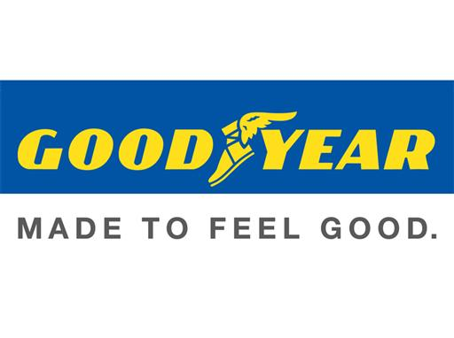 Franklin Resources Inc. Sells 20208 Shares of Goodyear Tire and Rubber (GT)