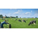 FrieslandCampina observes an increase in dairy farms with outdoor grazing cows for fourth consecutive year