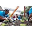 Kaiser Permanente Teams Up with Kalaheo High School Community on Campus Beautification