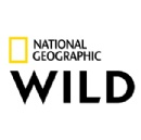 Nat Geo Wild Taps Emmy Award-Winning Mark Steines as Host of Animal Er Live, A New Live Event Series from Big Fish Entertainment