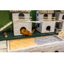 Amazonia Exhibit at the Smithsonian's National Zoo Now Includes a Guinea Pig Village