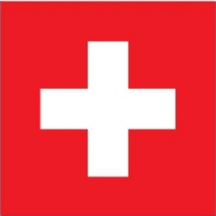 Swiss light banking license