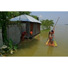 Children using a boat made out of a banana tree makes their way to a flood shelter in Kurigram District is located in the Rangpur Division, in Northern Bangladesh.