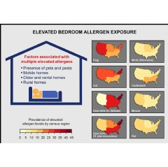Factors contributing to elevated bedroom allergen levels include presence of pets and pests, type of housing, and living in rural areas. Individual allergens vary by geographic area. NIEHS