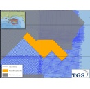 TGS announces Alonso 3D multi-client project in US GOM