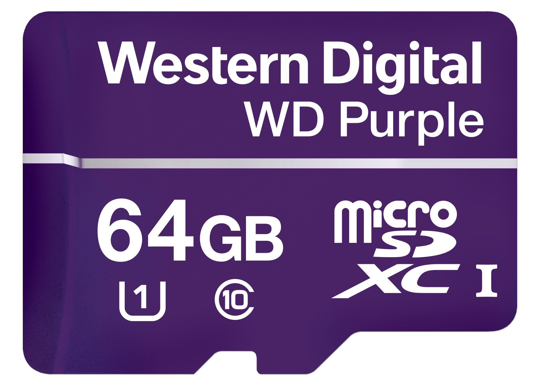 Western Digital Corporation (WDC) - Active Stock Momentum