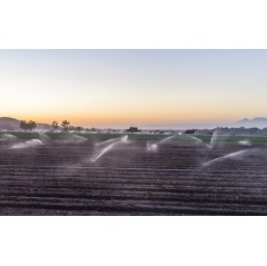 Many California farms need intensive irrigation to maintain their crops.