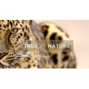 Sky Studios acquires stake in UK based natural history producer True to Nature