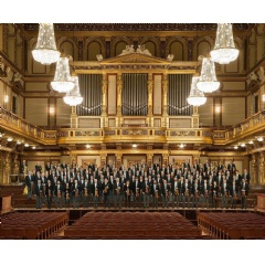 The Vienna Philharmonic, in the midst of a world-wide pandemic, will perform their famous New Year's Day concert from the renowned Musikverein in Vienna on January 1, 2021.